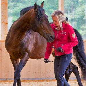 Andrea Jänisch Training